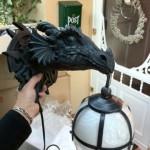 Dragon Sconces