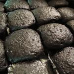 """plain """"unlighted"""" briquettes"""