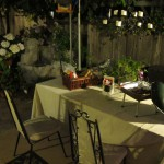 outer patio with waterfall & Brownie Briquettes
