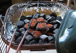 Brownie Briquettes Closeup