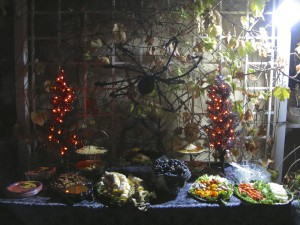 Giant web & spider over the backyard food table