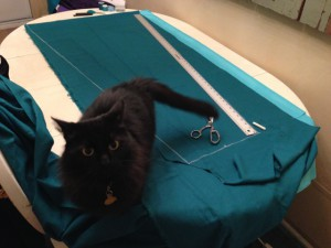 Ebony is always helpful with large swaths of fabric!