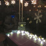 Snowflake lights, giant plastic snowflakes and waterfall lights