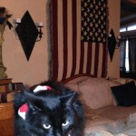 Festive Ebony in front of the flag