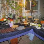 Backyard Food Table - by Tash