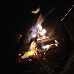 Roasting Marshmallows for Star-Spangled S'mores