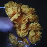 One of 12 marigold garlands from Amazon for free points...woohoo!