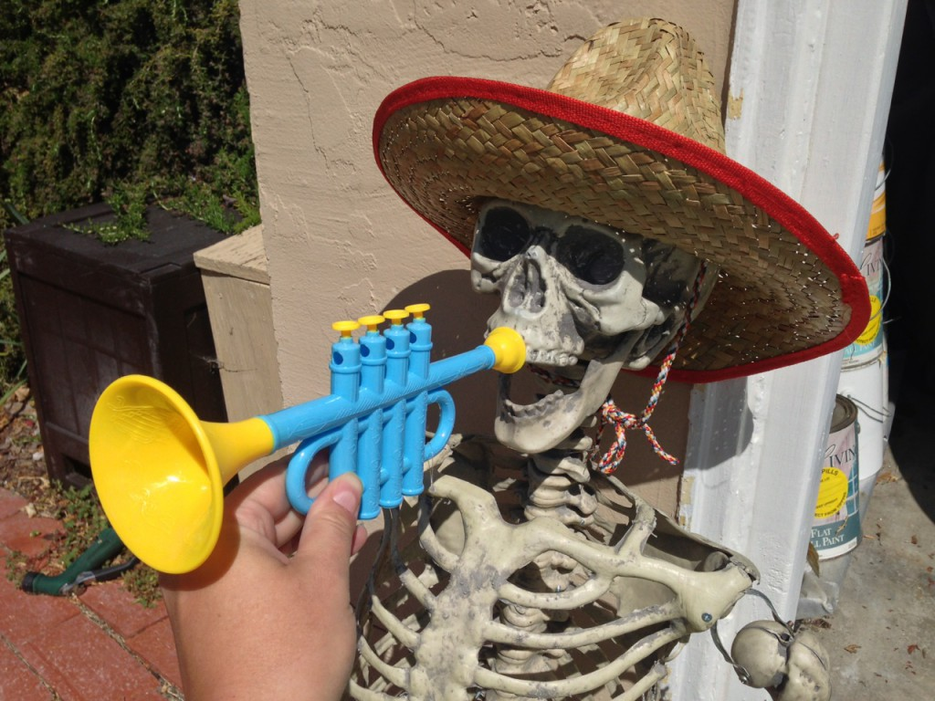 Testing trumpets and sombreros on skeletons