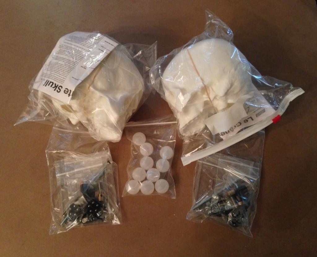 Two more animatronic skull kits arrived