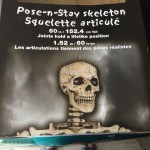 """Costco """"poseable"""" skeletons"""