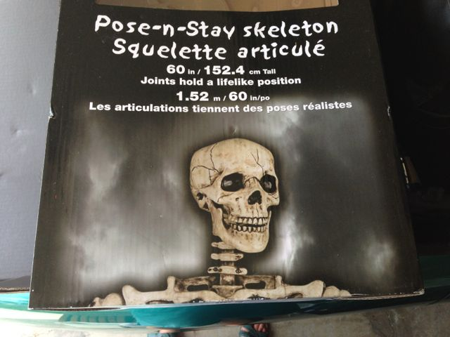 "Costco ""poseable"" skeletons"