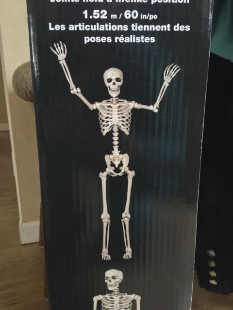 HW15SkeletonMods - 002
