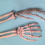 Better designed wrist joint that waves and rotates vs. Costco wrist joint that only waves