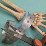 HW15SkeletonMods - 020