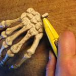 HW15SkeletonMods - 023