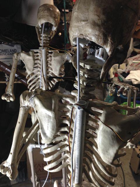 HW15SkeletonMods - 102