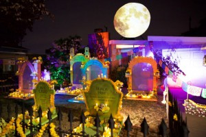 Glowing Graveyard