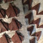 Unmolded Trek chocolates, ready for decoration