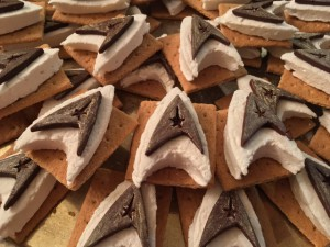 Closeup of S'more Trek