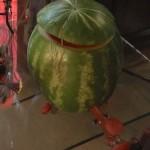 Fresh Watermelon Keg