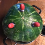 Add the screw-in rubber feet from the kit to hold the watermelon keg stable