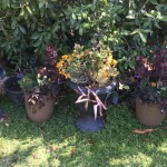Gothic Garden & Ghostly Greenery
